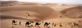 (الهجرة النبوية، دروس وعبر (الجزء الرابع